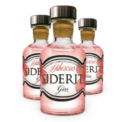 Mini Bottle Geneva Hibiscus 5 Cl.