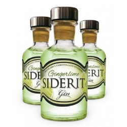 Mini Bottle Geneva Ginderlime 5 Cl.