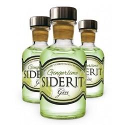 Mini Bottle Geneva Ginderlime 5 Cl.